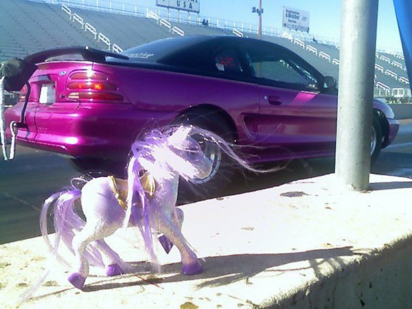 Michele's Little Pony!